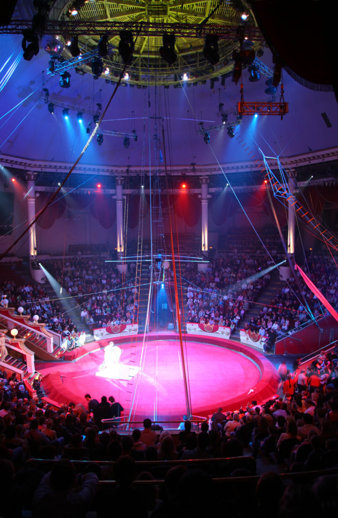 A circus type show inside a circus ring.