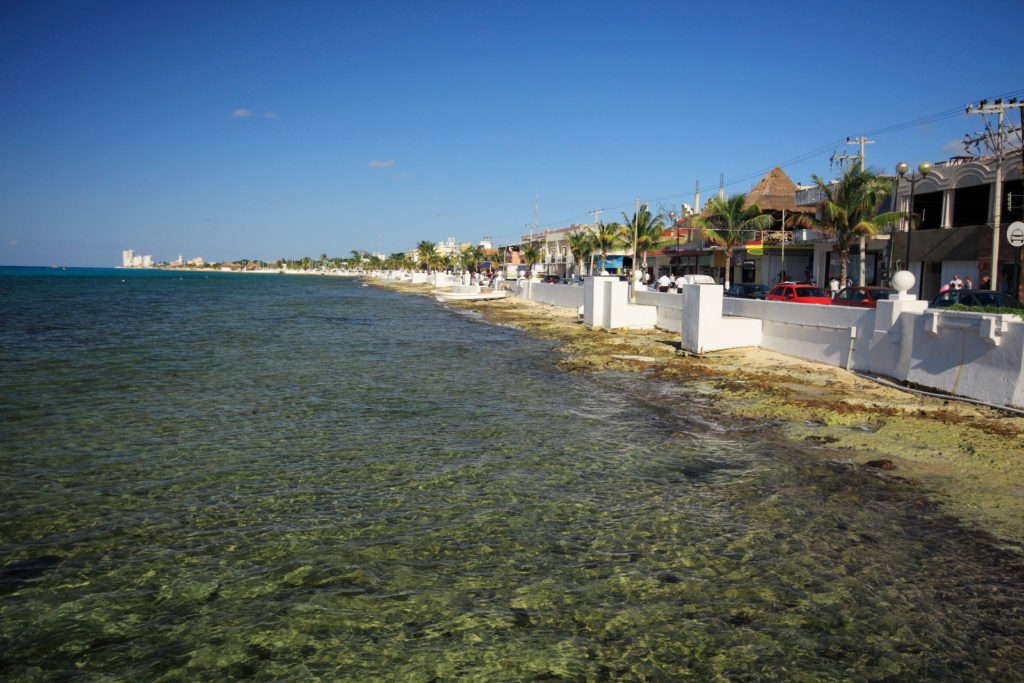 The coast in Cozumel, Mexico.