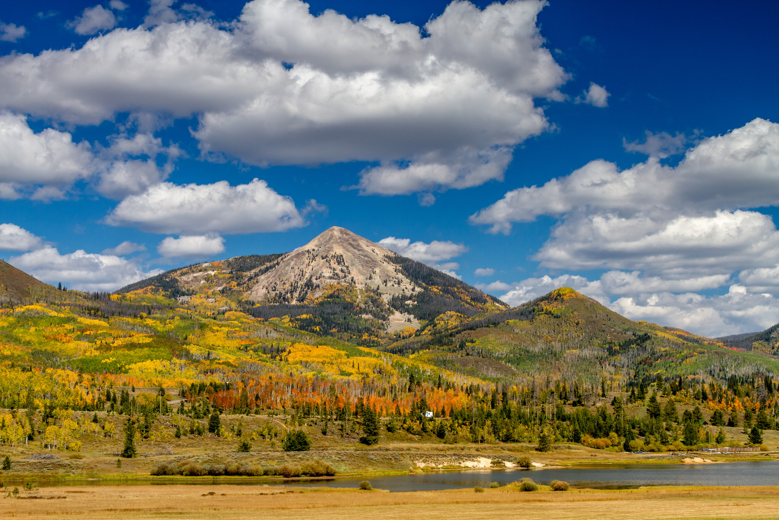 Hahn Mountain and Steamboat lake blue skies with puffy white clouds, the treats and landscape are brightly colored in yellows and oranges