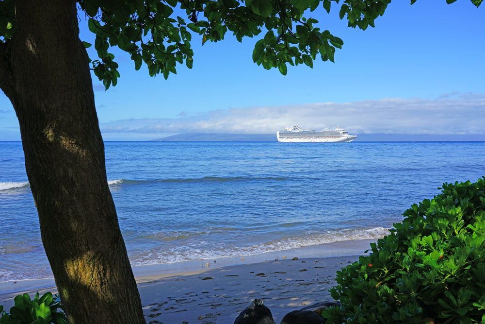A Princess cruise ship off the coast of Maui