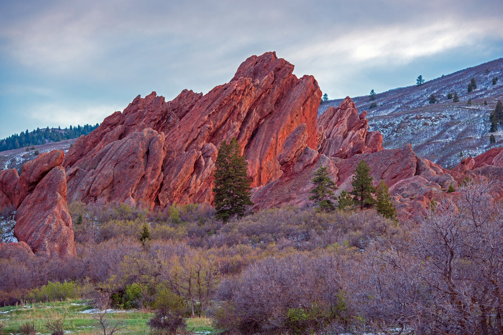 Red rocks at with wild shrubs at the base and scattered pines dotting the landscape, foothills in the background