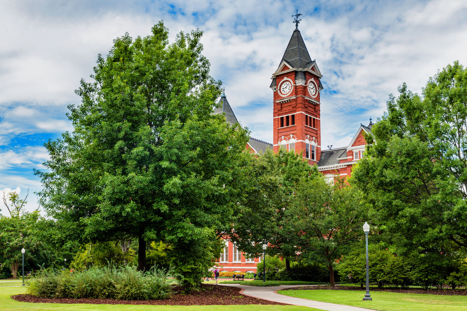Auburn college campus with historic red brick building in the back featuring a clock tower and gray shingled roof.  Green trees and green grass frame the scene with blue skies in the background