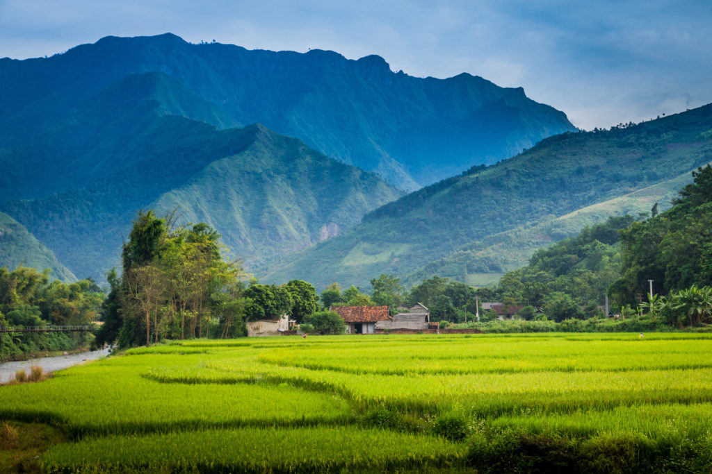 Vietnam greenery and mountains.