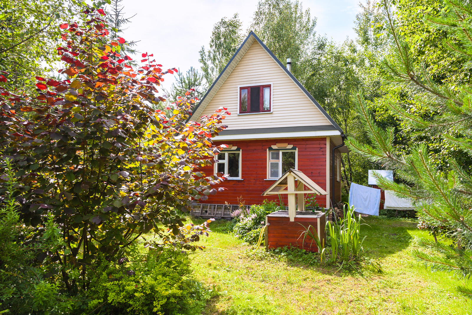 Cottage with Unkempt Lawn and overgrown trees, with laundry drying on the line.