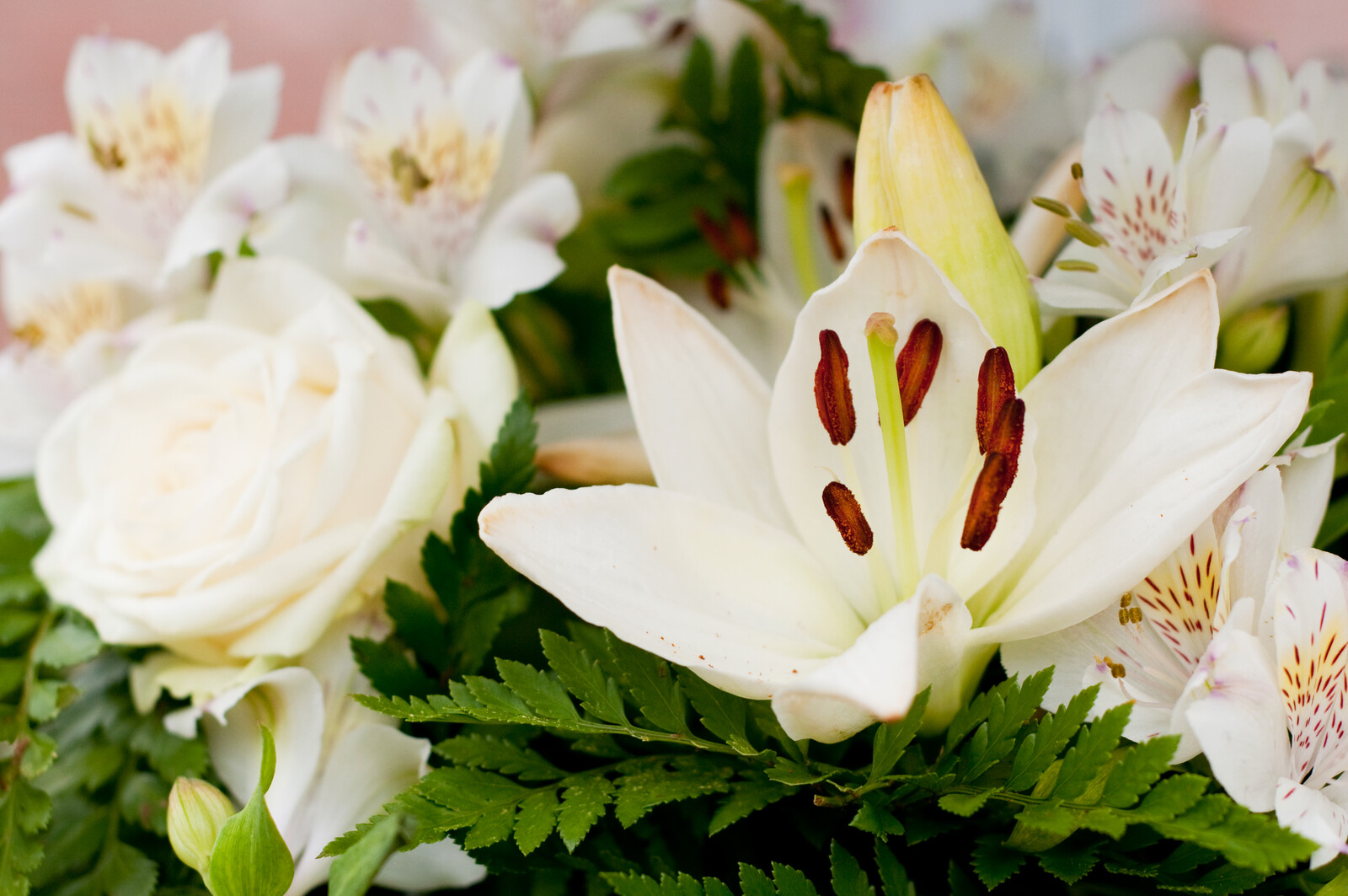 Funeral Scams - White funeral flowers with green fern accents includes various lilies and a white rose