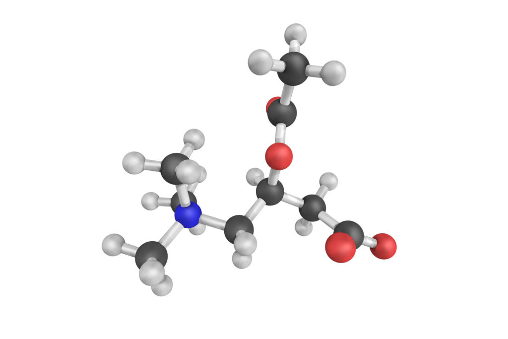Acetyl-L-Carnitine molecular model coclored in light and dark gray, with blue and red components