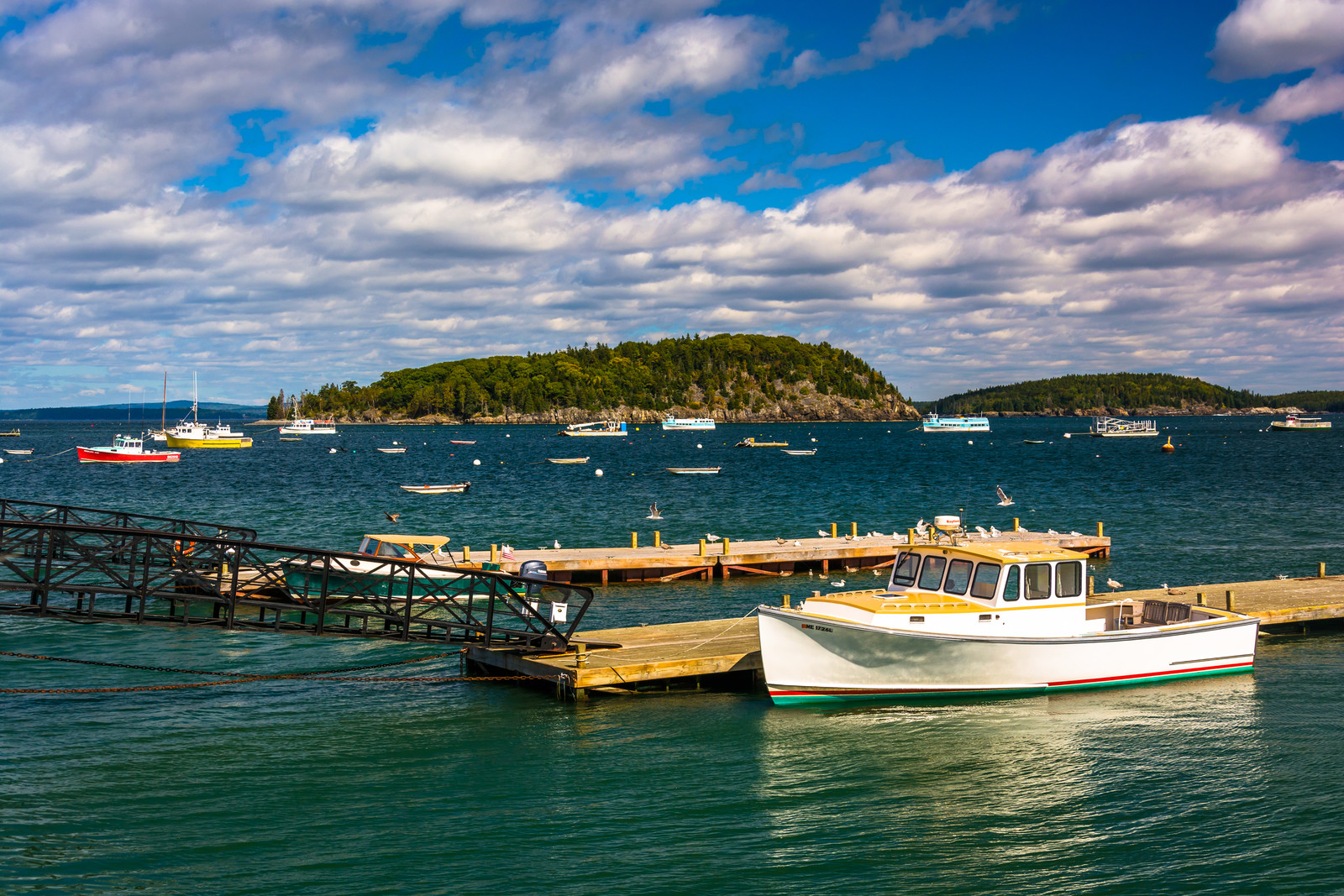 Blue skies with colorful Boats docked in frenchman bay, in bar harbor, maine.