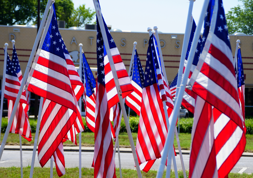A collection of American flags in the ground in Millsboro Delaware