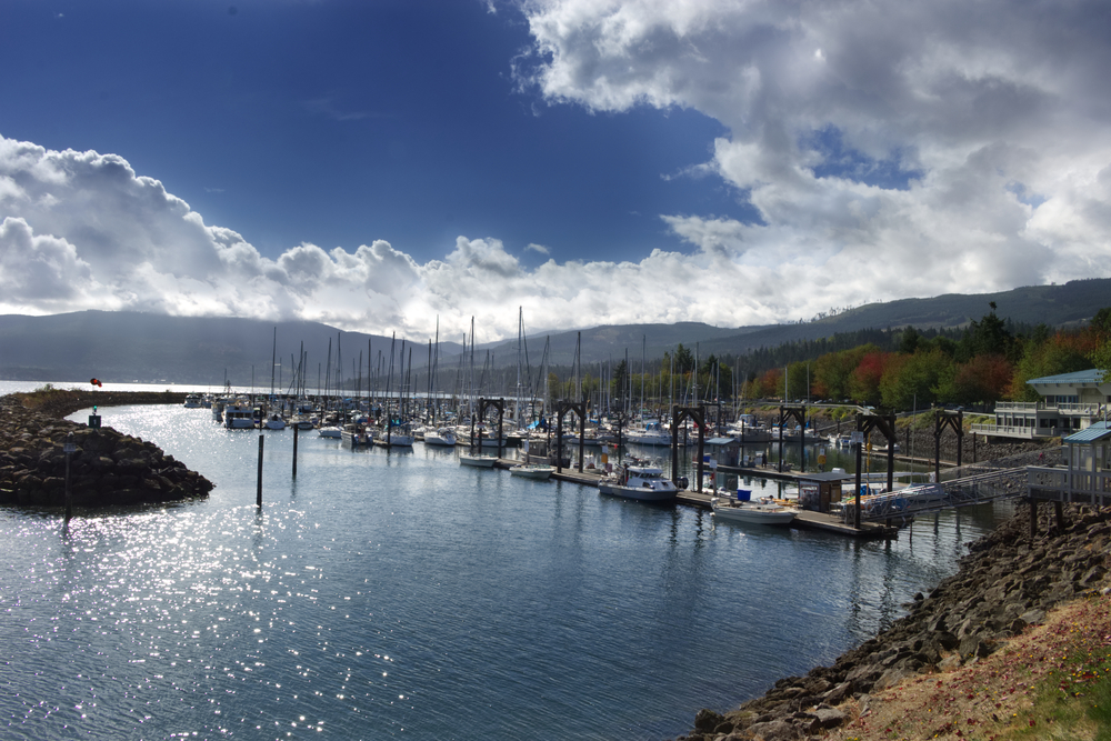 A marina in Sequim Washington showing many boats out on the water