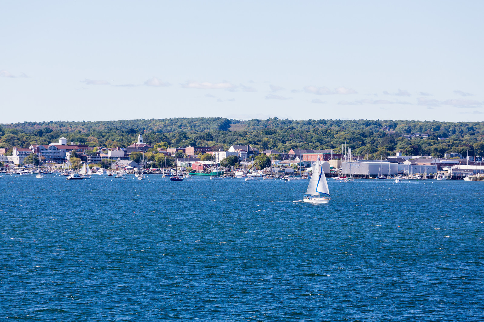 Photo taken from the water looking in at the shoreline of Rockland Maine with sailboats in the bay