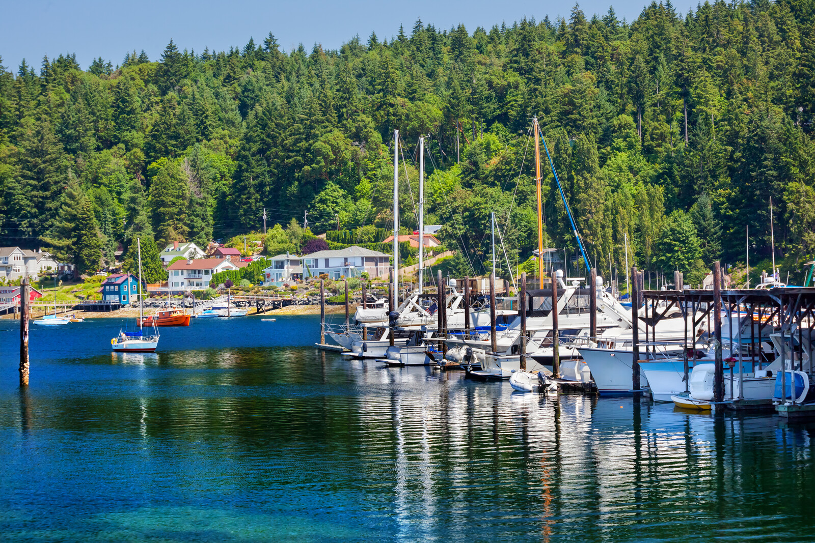 Docks in Gig Harbor Washington, white sailboats lining the harbor with housing lining the houses backed by green pines