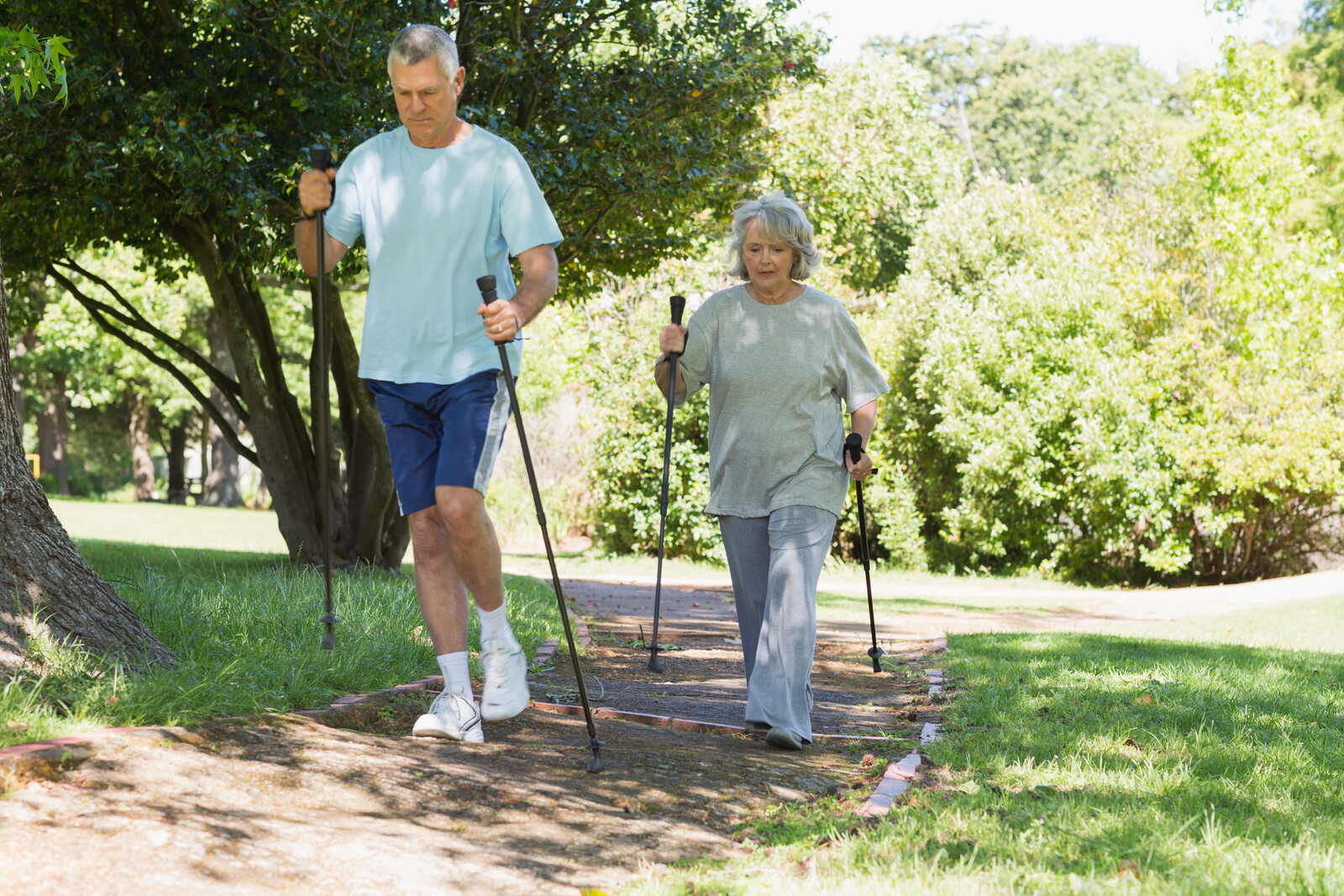 Senior couple nordic walking on pathway in the park on a sunny day with green grass and lots of trees