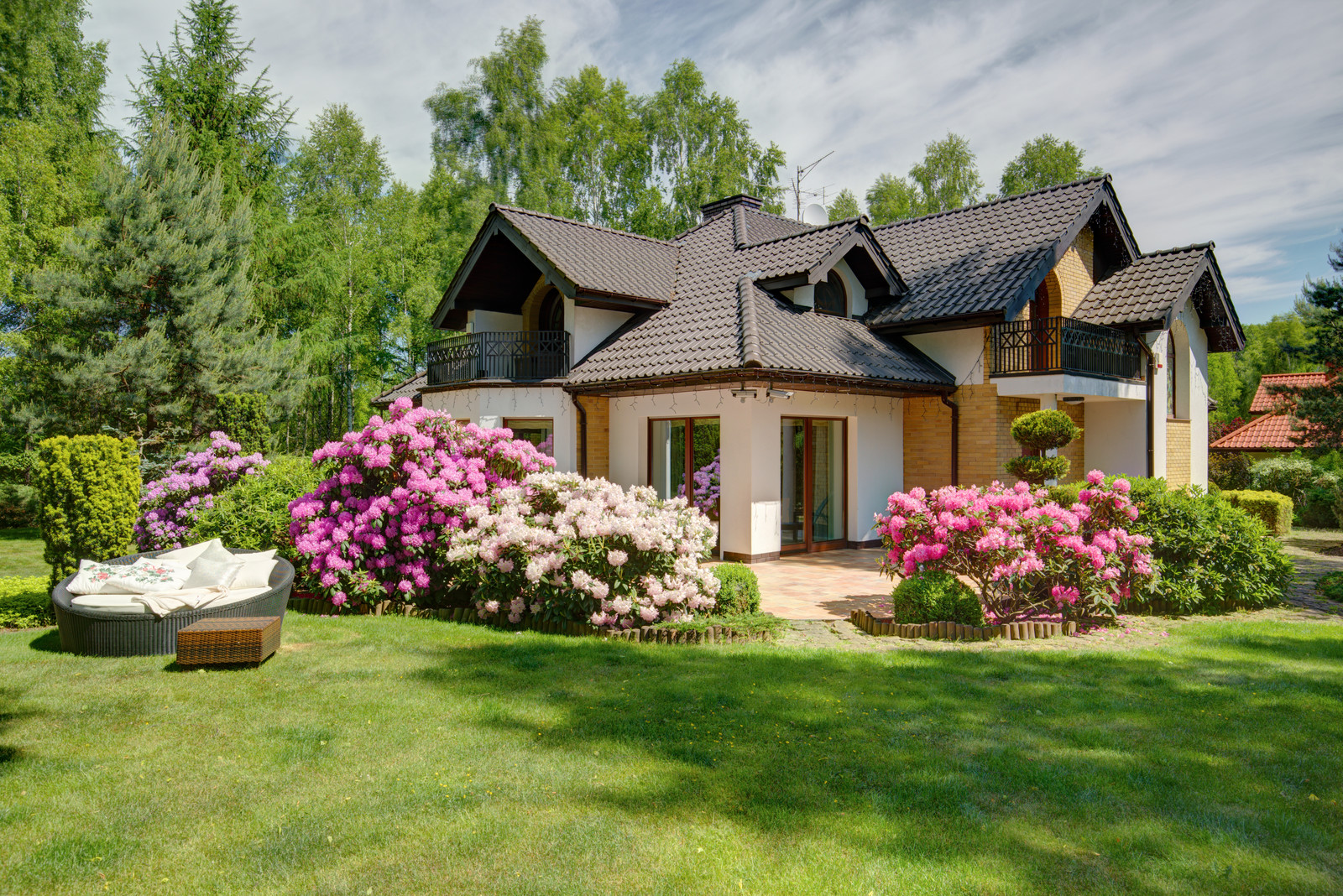 Suburban village house with a beautiful green yard and flowering shrubs