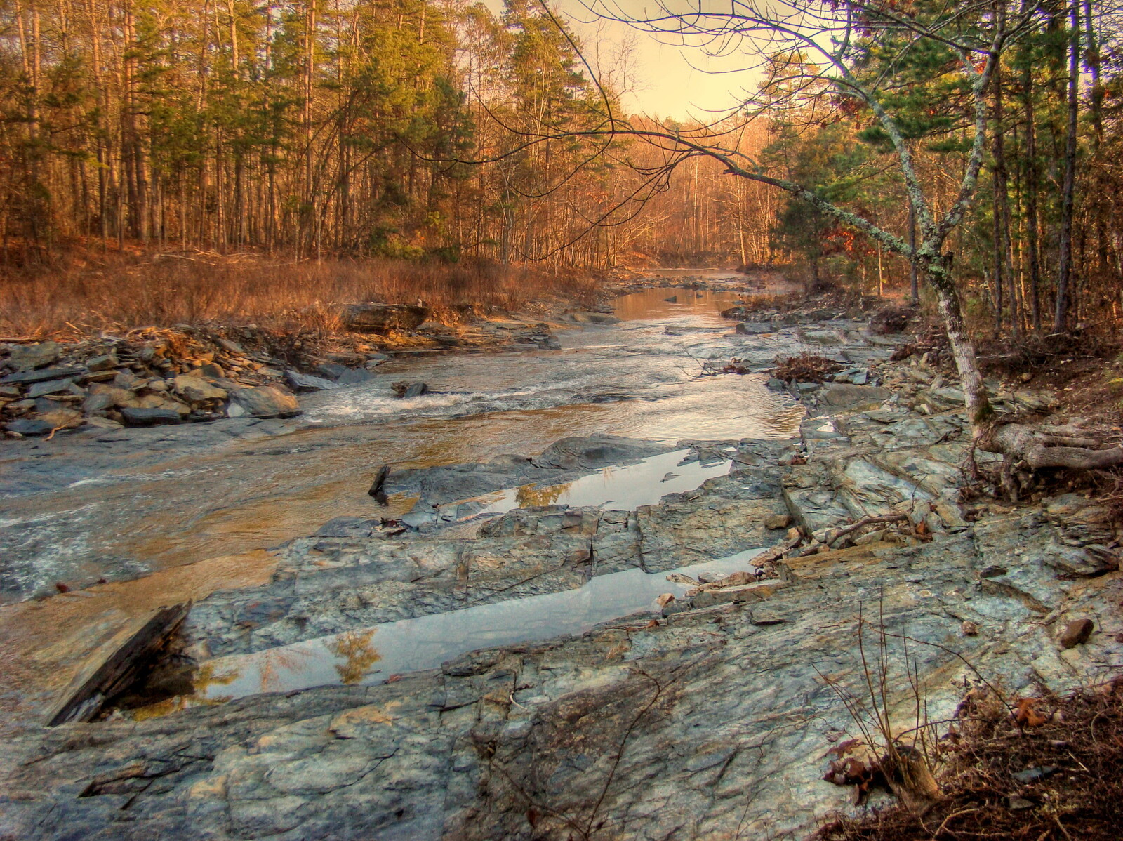 Creek in fall with rocky shores and evergreens lining the creek