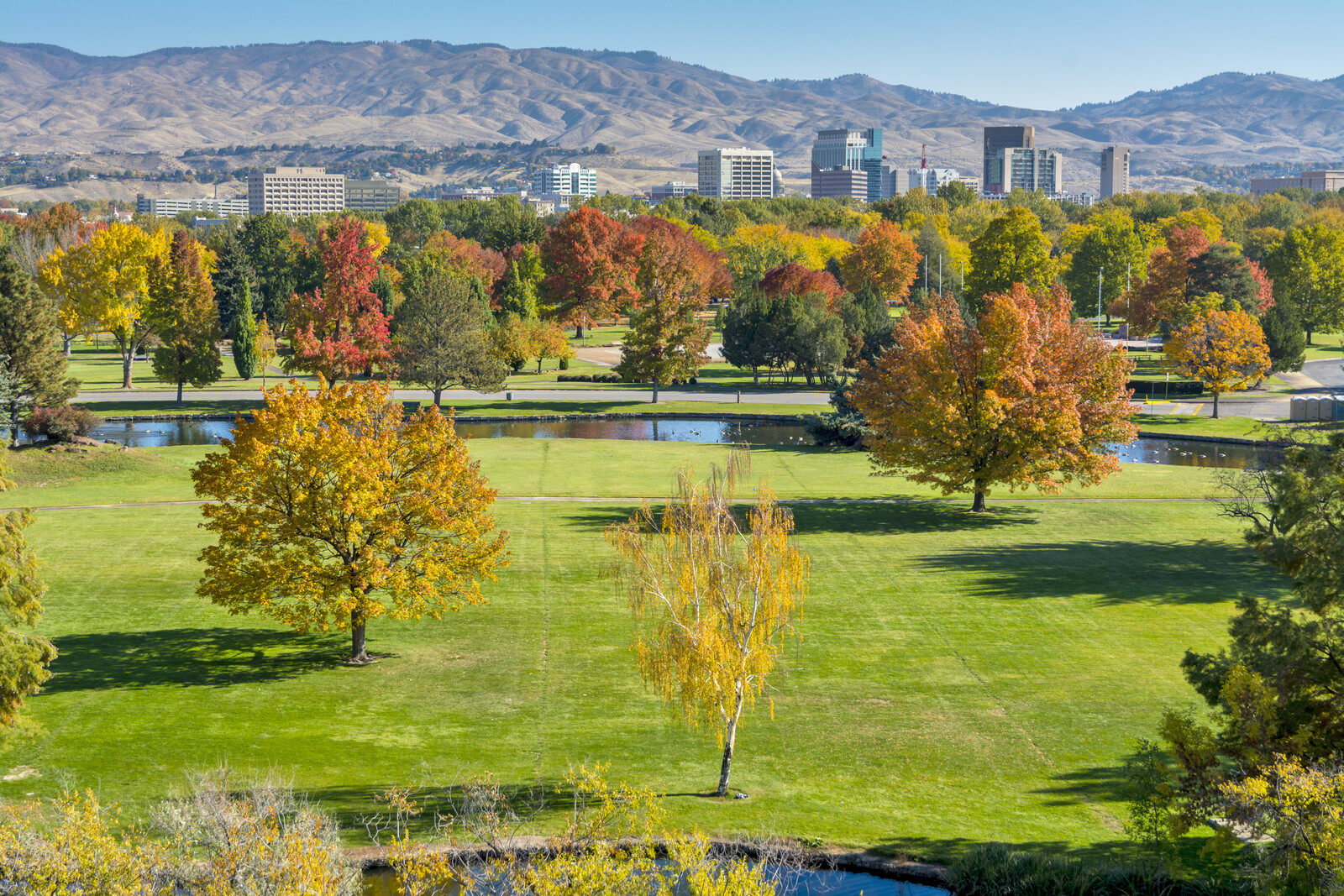 Grassy field and small lake in the fall with colorful leaves on the trees overlooking the boise skyline with mountains in the background
