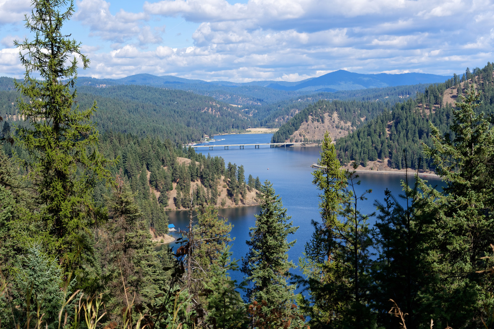 Photo from above looking down at lake coeur d'alene, with green pines lining the hills and mountains in the background with white billowy clouds and blue sky