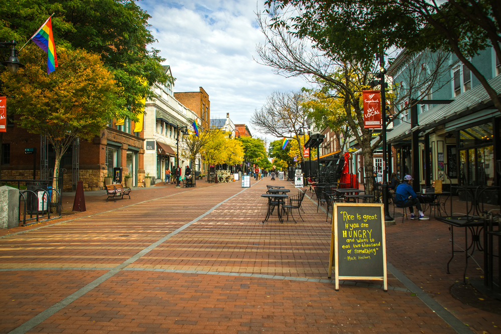 A street in downtown Burlington Vermont showing a rainbow flag and a sign about food with green trees and a cloudy sky