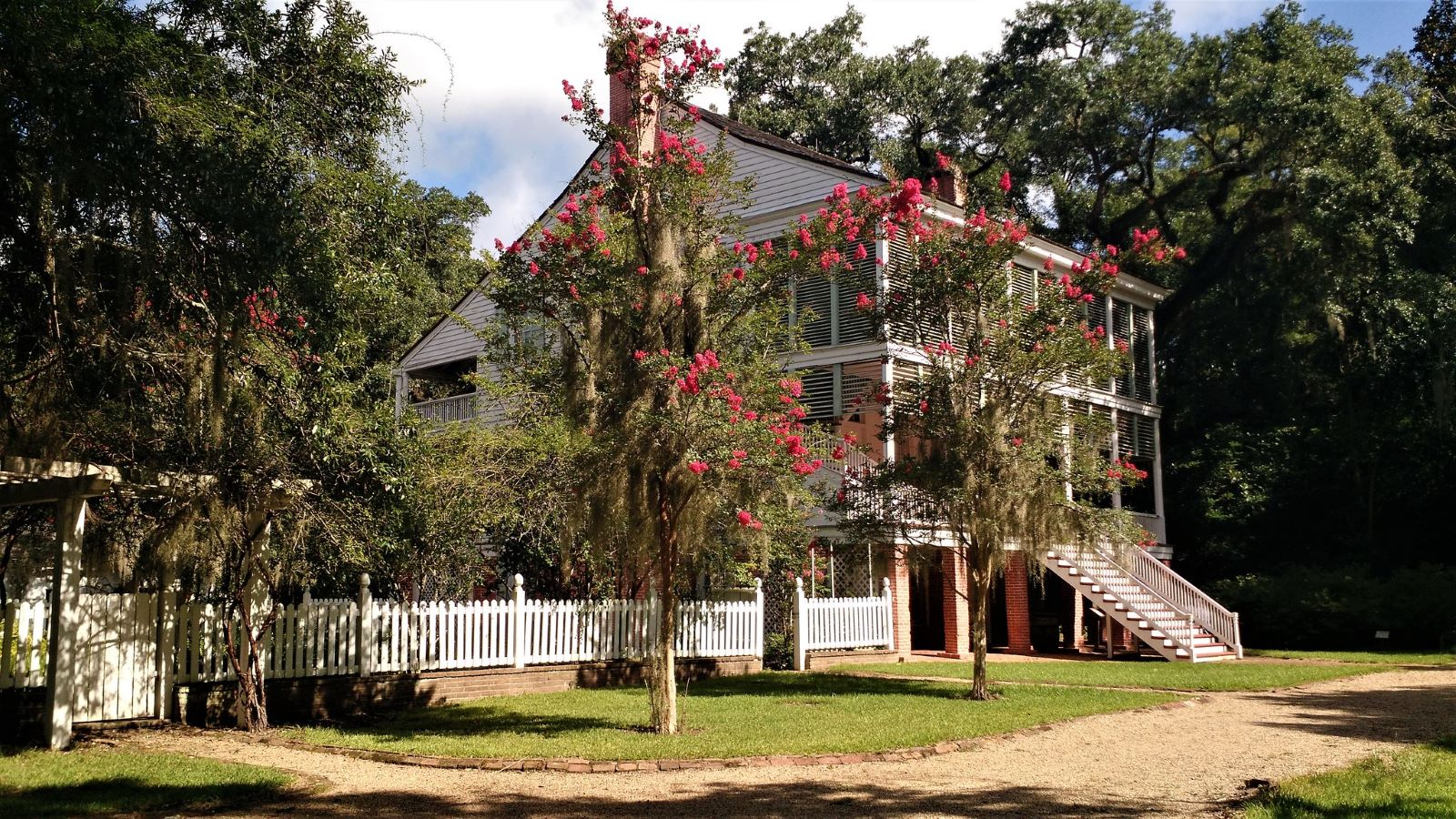 Southern style home with enclosed front veranda and back porch surrounded by a white picket fence with two trees with red flowers out front