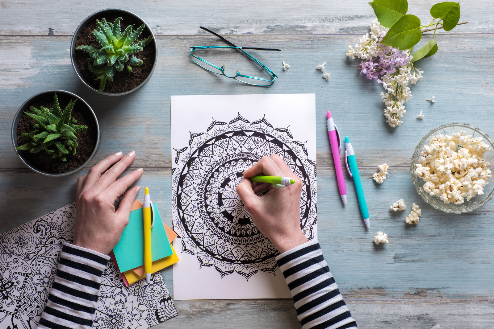 Photo of a woman's hands coloring a mandala with two succulents and colored pencils, popcorn and reading glasses sitting on the table too
