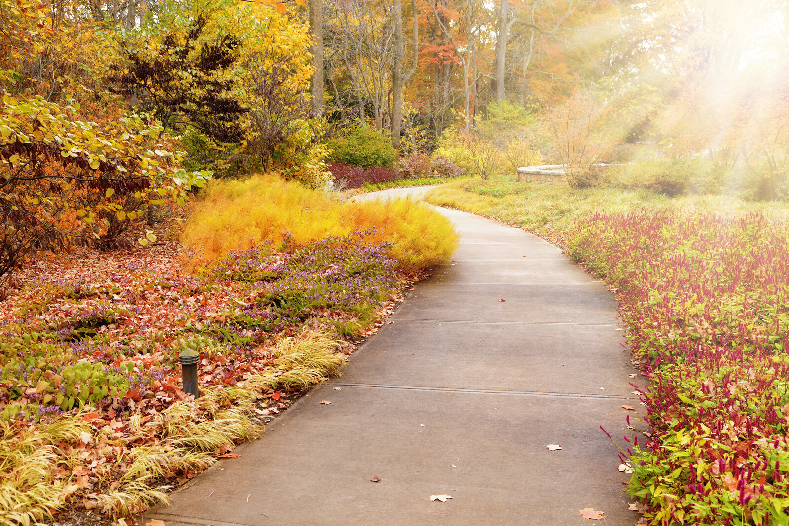 Places to Retire in Indiana - Walkway in an Indianapolis park in the fall with soft autumn colors with trees and perennials lining the path and sunbeams lighting the way