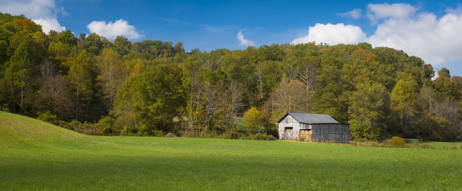 Old gray hay barn sitting at the edge of the woods and green grass fields in Berea Kentucky