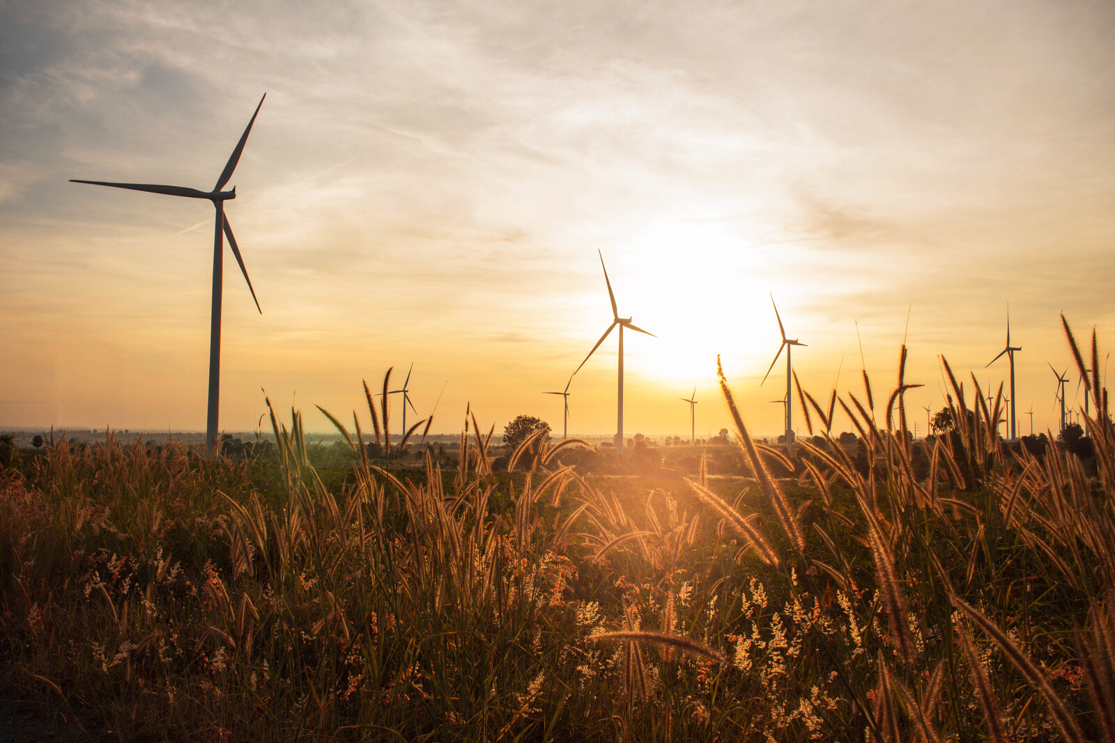 Top 5 Places To Retire in Kansas- photo of country fields with wind turbines at sunset with golden skies