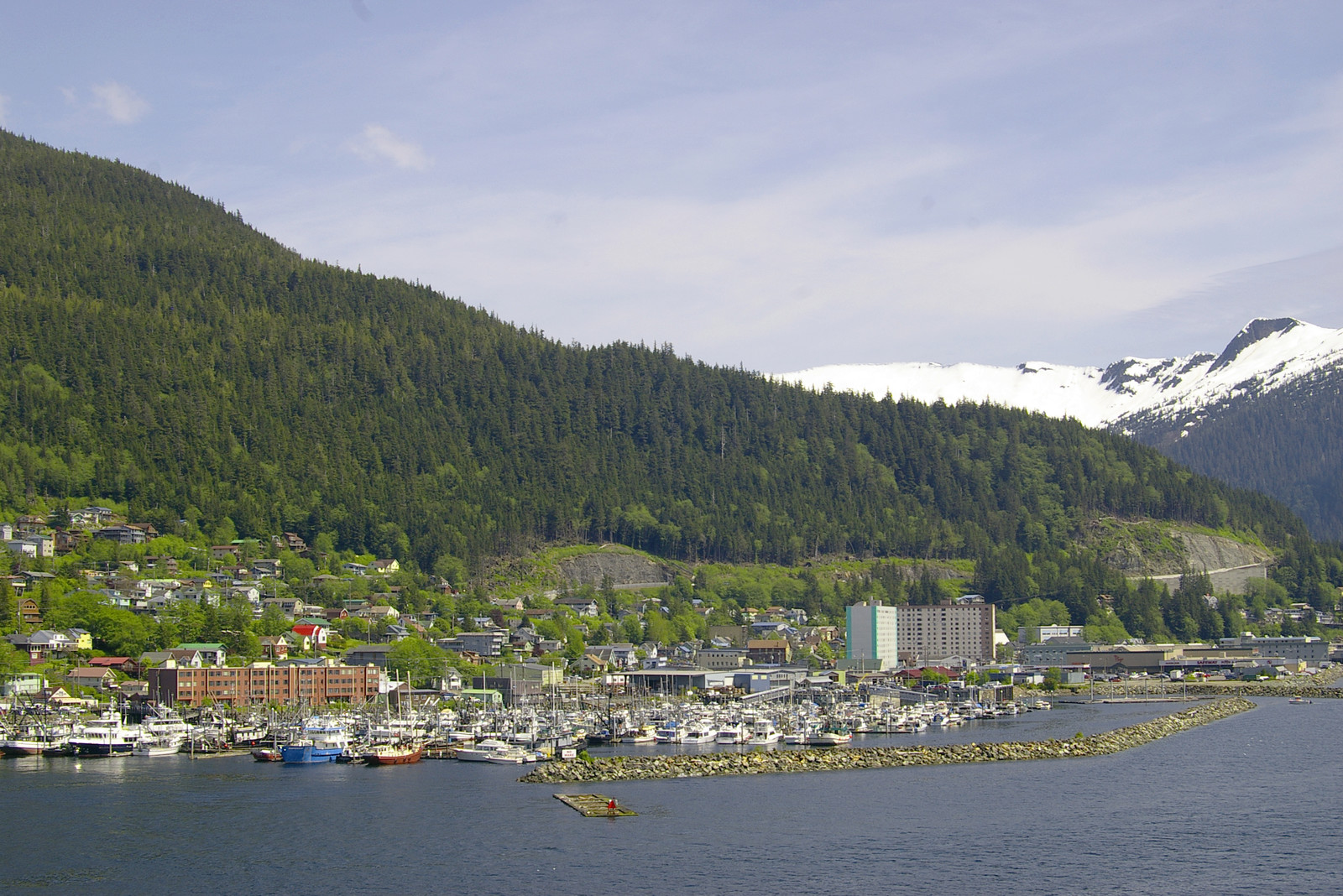 Ketchikan city and harbor with trees built into the hillside and evergreen hills in the background with blue skies