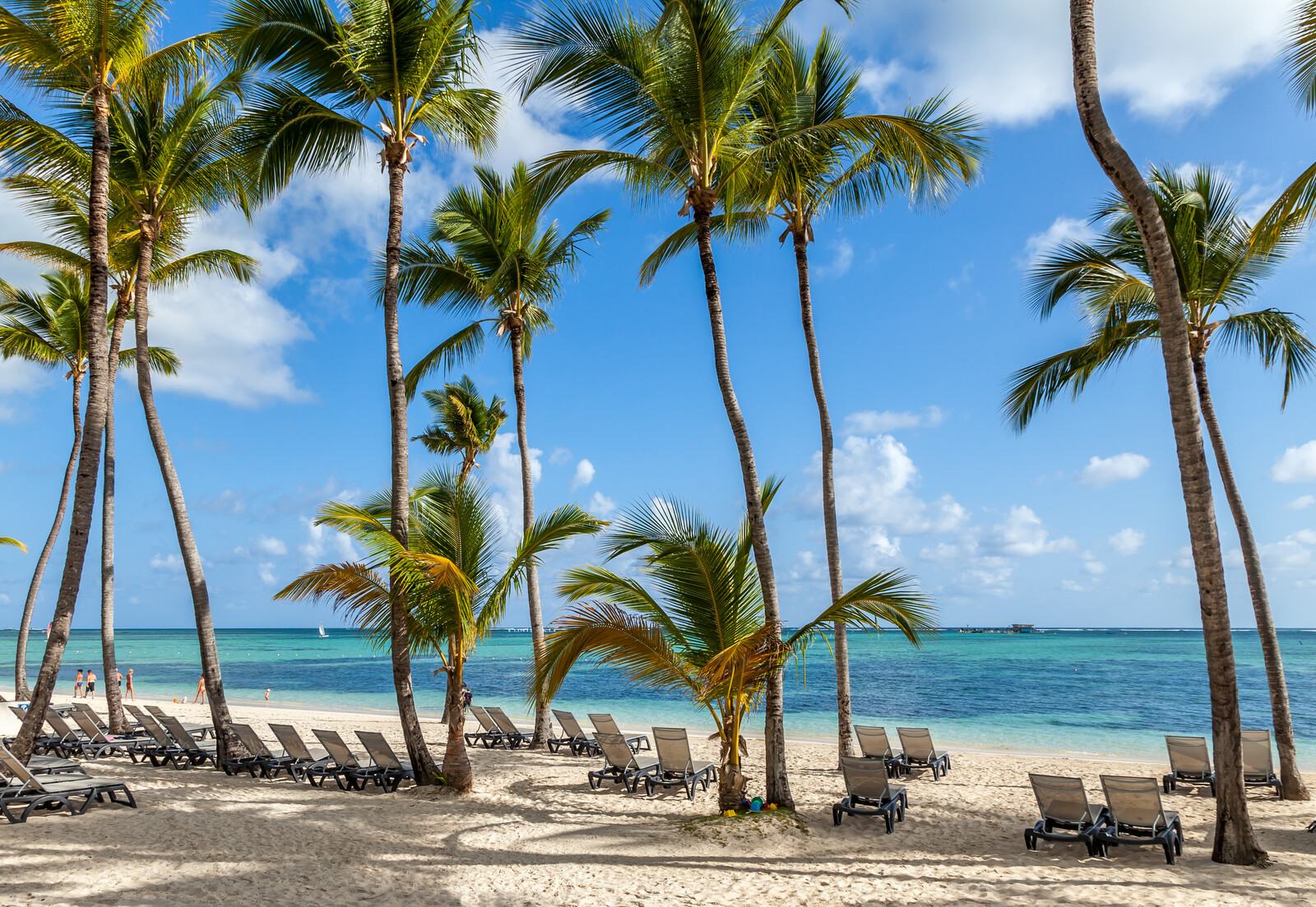 white sand beaches with clear blue waters in front, along the beach are hotel lounge chairs with palm trees providing shade
